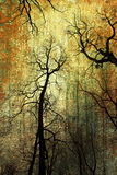Trees on grunge background Royalty Free Stock Photography