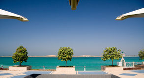 Trees and gulf in Abu Dhabi royalty free stock photo