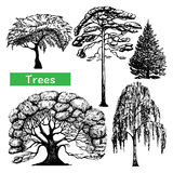 Trees hand drawn black icons set Royalty Free Stock Images