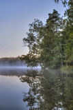 Trees hanging low over a lake with morning mist drifting across Stock Photos