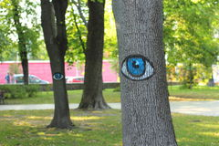 And the trees have eyes Royalty Free Stock Photo