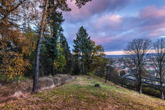 Trees on the hill above the city. And clouds illuminated by the setting sun. Colorful autumn and Moravian landscape Lysice Royalty Free Stock Photos