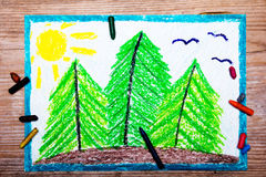 Trees on the hill. Colorful drawing: Trees on the hill Stock Photography