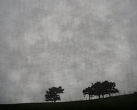 Trees on the hill Stock Image