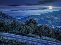 Trees on a hill side near the mountain road at night. Few trees on a hill side meadow near the mountain asphalt road at night in full moon light stock images