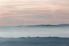 Trees, hills and fog. A view of some distant trees on a hill, with a background of fog and distant mountains beneath a soft and warm sunset cloudscape royalty free stock photo