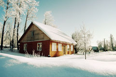 Trees in hoarfrost, red house on morning Stock Images