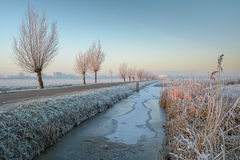 Trees with hoarfrost. A wintery sunrise in the Boterhuispolder of Leiderdorp, the Netherlands. The trees are covered with hoarfrost Stock Photo