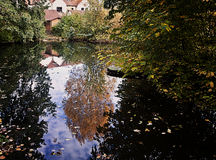 Trees and house reflection on a small lake with fallen leaves fl Royalty Free Stock Photo