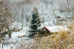 Trees and houses covered by snow. Winter scenery Stock Photos