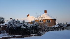 Trees and Houses with Snows. In Winter, London, UK Royalty Free Stock Photography