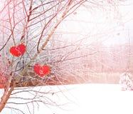 Trees i snowen Hjärta Arkivfoto