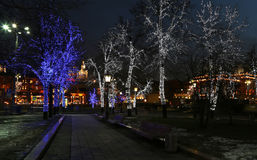 Trees illuminated to Christmas and New Year holidays at night in Moscow, Russia Stock Photo