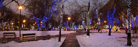 Trees illuminated to Christmas and New Year holidays at night in Moscow, Russia Stock Photos