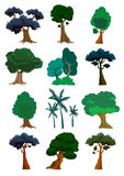 Trees illustration in  Stock Images