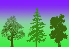 Trees illustration. With gradient background Royalty Free Stock Images