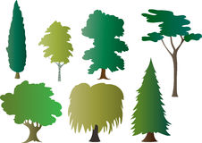 Trees. A  illustration of seven different trees Stock Photos