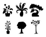 Trees Stock Photo