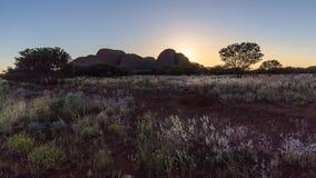 Free Trees In The Australian Bush At Sunset Stock Photo - 159522360