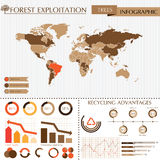 Trees info graphic Royalty Free Stock Image