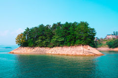 Trees on island. Many trees on an island Stock Photography