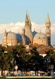 Trees in the island Memmia Prato della Valle and Basilica del Santo in Padua in Veneto (Italy) Stock Photos