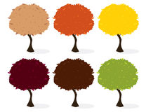 Trees isolated. Tree in six leaf color variations with a shadow on a white background stock illustration