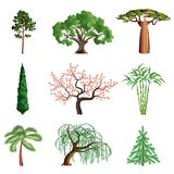 Trees isolated on white vector set Stock Photo