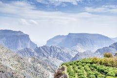 Trees Jebel Akhdar Oman. Image of landscape trees on Jebel Akhdar Saiq Plateau in Oman stock image