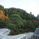 Trees of Kyoto, Japan. A view in the silver temple of Kyoto, Japan with man-mad sand on the grounds Stock Photography
