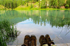 Trees and lake. The lake with trees .looks beautiful Royalty Free Stock Photography
