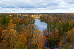 Trees and lake. Gatchina park. St. Petersburg Stock Image