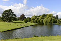 Trees and lake in Leeds castle park, Maidstone, England. Trees and lake in large park at medieval castle, green nature shot in bright light under a cloudy sky Stock Images