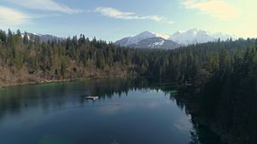 Between Trees Lake Mountain Aerial 4k. Aerial footage of a beautiful lake in the forest with mountains in the background. Shot in Flims, Switzerland in 4k stock video footage