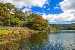 Trees,Lake and Mountain Stock Photo
