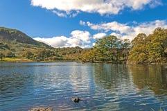 Trees,Lake and Mountain Royalty Free Stock Photos