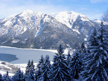 Trees lake and mountains. Snow clad pine trees in foreground, frozen lake below  with mountain backdrop Royalty Free Stock Photo