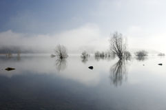 Trees and lake with reflections. In Spain Stock Image