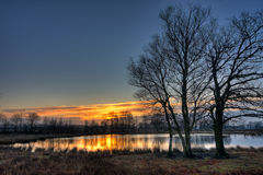 Trees and lake at sunrise stock images
