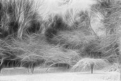 Trees Landscape Abstraction Royalty Free Stock Photos