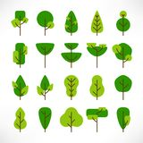 Trees large set flat vector illustration