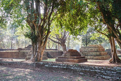 Trees and Laterite Structure at Wat Pra Khaeo Kamphaeng Phet Province, Thailand Royalty Free Stock Photography