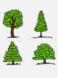 Trees with leaves. Images of trees with leaves and  tree silhouettes Royalty Free Stock Images