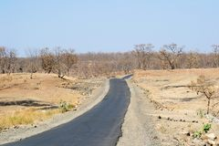Road and Trees without leaves. Before the summer season in India and Tar Coal Passing between the undulating terrain royalty free stock photo