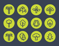 Trees line icons set Stock Photos