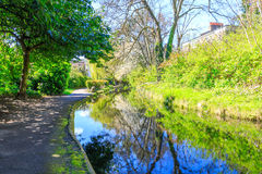 Trees at London New River Walk. Sunlit canal with surrounding foliage and trees reflected at the New River Walk, Canonbury, London stock images