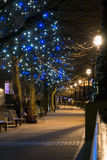Trees at London's South Bank. Illuminated trees at the walk by River Thames at London's South Bank on a winter night Royalty Free Stock Images