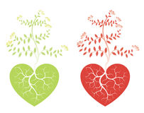 Trees and love hearts. Two colorful love hearts containing roots of leafy trees, isolated on white background Royalty Free Stock Photo