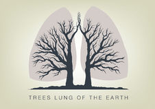 Trees - lungs of the planet. ecology in nature Stock Photography
