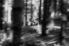 Through the Trees. A male downhill Mountain Biker powers down the hill amongst the trees royalty free stock images